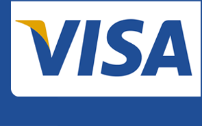 Payment with Visa